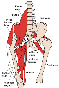 How to strength hip flexors for cycling.